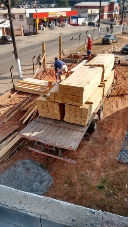 Pinos para construção.